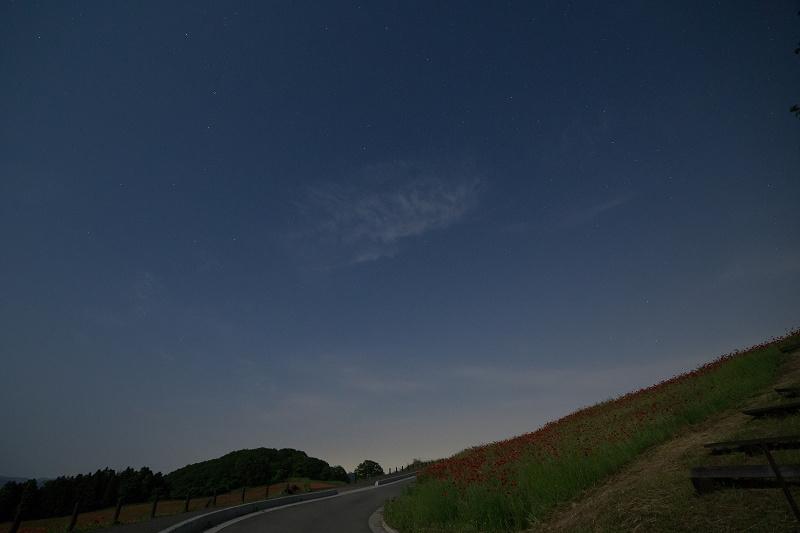 IMG_5049-1s.jpg